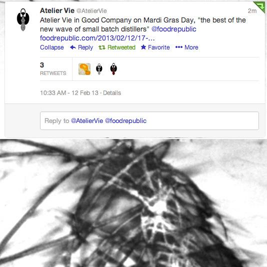 Mardi-Gras-tweetshot.jpg